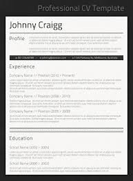 best professional resume templates with professional resume professional resume formatting