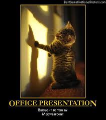 office presentation powerpoint kitten humor best demotivational posters best office posters