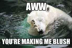 aww you're making me blush - Embarrassed Polar Bear - quickmeme via Relatably.com