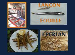 """Résultat de recherche d'images pour """"fritures de lancon"""""""
