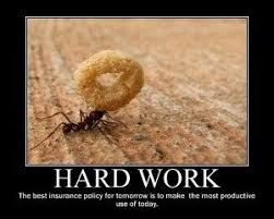 Hard Work Quotes   Hard Work Pays off Quotes and Sayings   Humour ... via Relatably.com