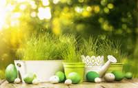Shop Easter Photography Backgrounds UK | Easter Photography ...
