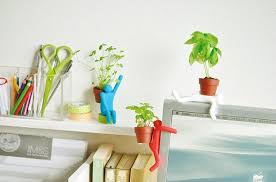 funny office desktop planting pot gardeningmini bonsai succulent plants with soil seedthe beautifying office bonsai grass pots planters mini
