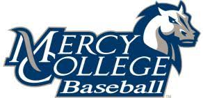 Image result for mercy college baseball