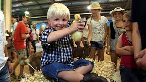 「sydney royal easter show」の画像検索結果