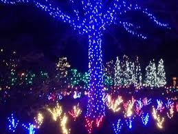 Image result for images of Winter Lights at the North Carolina Arboretum