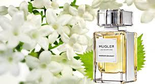 <b>Mugler Les Exceptions</b> – Wonder Bouquet | | Reastars Perfume and ...