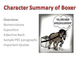 animal farm character summaries of the pigs  clover  benjamin and    boxer ppt pptx
