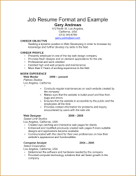 examples of resumes resume sample for government jobs experince 81 mesmerizing job resumes examples of