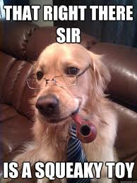 That right there sir is a squeaky toy - Sophisticated Dog - quickmeme via Relatably.com