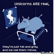 Ceramic Unicorns Memes. Best Collection of Funny Ceramic Unicorns ... via Relatably.com