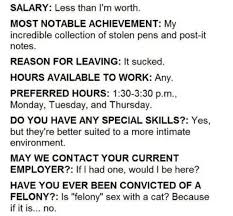 the best mcdonald    s job application that actually worked     thechivefunny job application mcdonald    s