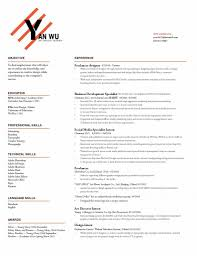 creative director resume sample art director resume chief creative director resume sample creative director resume sample