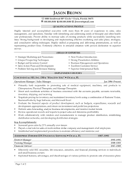 Information Technology Sales Resume  resume template information     vice president of sales resume account management resume exampl