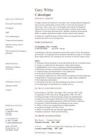 it cv template  cv library  technology job description  java cv        c developer cv template