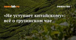 «Не уступает китайскому»: всё о <b>грузинском</b> чае / Новости ...