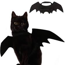 Ehdching Cat <b>Costume Halloween Pet Bat</b> W- Buy Online in Cape ...
