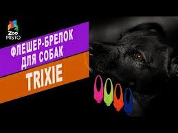 Жилетка для собак Маркиз| Обзор одежды для собак | Markiz <b>Pet</b> ...