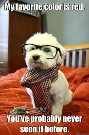 Hipster Dog memes | quickmeme via Relatably.com
