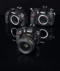 Nikon D3300 vs. Nikon <b>D5300</b> vs. Nikon D7100 - What Digital Camera