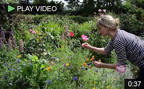 Small Picture Garden Design Garden Design with Wildflower gardening on