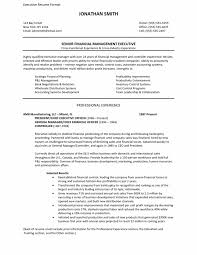 doc 547713 s executive resume example cover letter sample executive resume