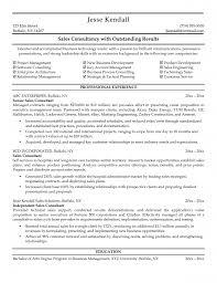 resume resume consultant template of resume consultant
