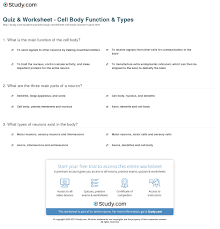 quiz worksheet cell body function types com print what is a cell body definition function types worksheet