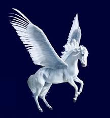 Image result for pegasus