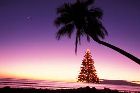 <b>Hawaiian</b> Christmas and New Year's Words and Phrases