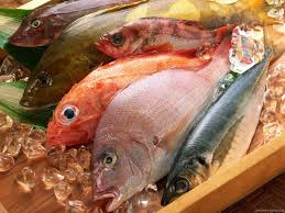 Image result for pics of processed fishes