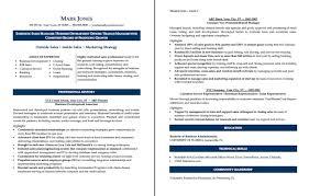 sample resume  sales manager sales manager sample