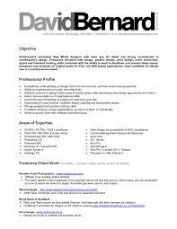 modern resume sample of graphic designer professional profile gallery of sample professional profile for resume