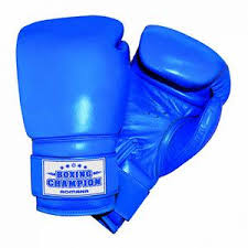 Боксёрские <b>перчатки Romana</b> 2018/2019 – каталог, где купить ...