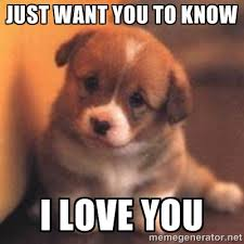 Just want you to kNow I love yOu - cute puppy | Meme Generator via Relatably.com