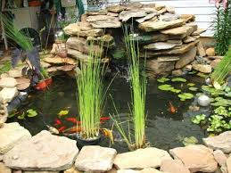 diy patio pond: outdoor fish tank pond woohome