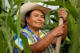 Resultado de imagen para mujeres mexicanas