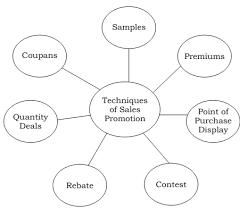 Resume Advice  Clarify Language Proficiency  Job Advice