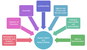 student rights and responsibilities student affairs student rights and responsibilities participation in university and students associations dom of discussion