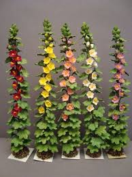ready to use landscaping plants and flowers for dollhouses and dollhouse miniatures bl 112 dollhouse miniature