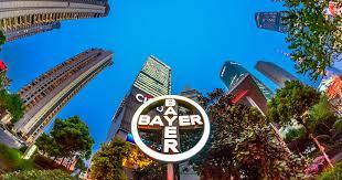 Bayer – Global Home