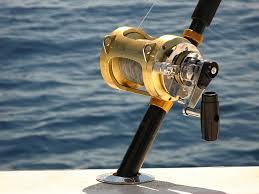 Best Inshore <b>Saltwater Spinning Reel</b> - Top Five Reels
