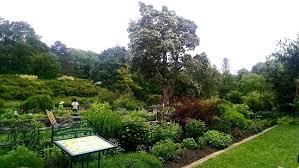 campus treasures botanical garden undergraduate admissions office botanic1