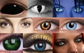Картинки по запросу цветные контактные линзы