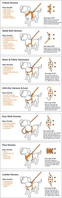 best ideas about dog walking camping gadgets let s stop using collars as leash attachments dogs can be injured when they are pulled