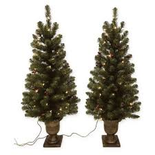 4-Foot Pre-Lit Christmas Potted Porch Tree (<b>set of 2</b>) | Bed Bath ...