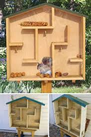Nuts To Them  Brilliant Backyard Squirrel Feeders   WebEcoistA Mazing Squirrel House