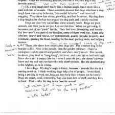essays cvn con ip essay sample cover letter short argumentative essay example custom essay writing service benefits sample