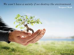 Environment Quotes & Sayings Images : Page 29