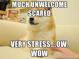 much unwelcome scared very stress….ow. wow - so doge | Meme Generator via Relatably.com